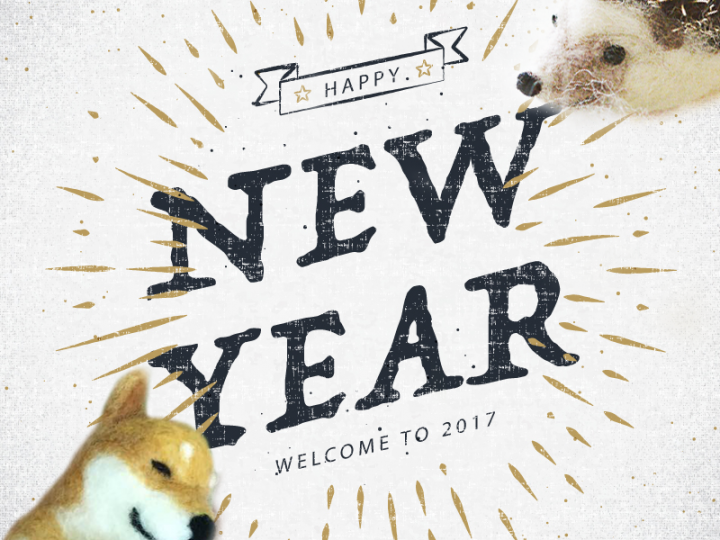 【手扎】回顧2016年的總總,迎接2017年