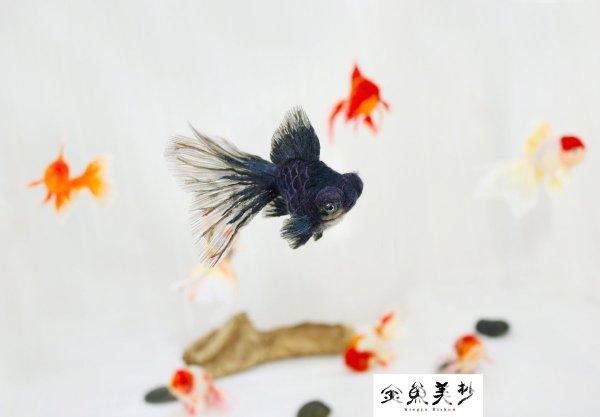 【展覽】無法抗拒超美金魚羊毛氈
