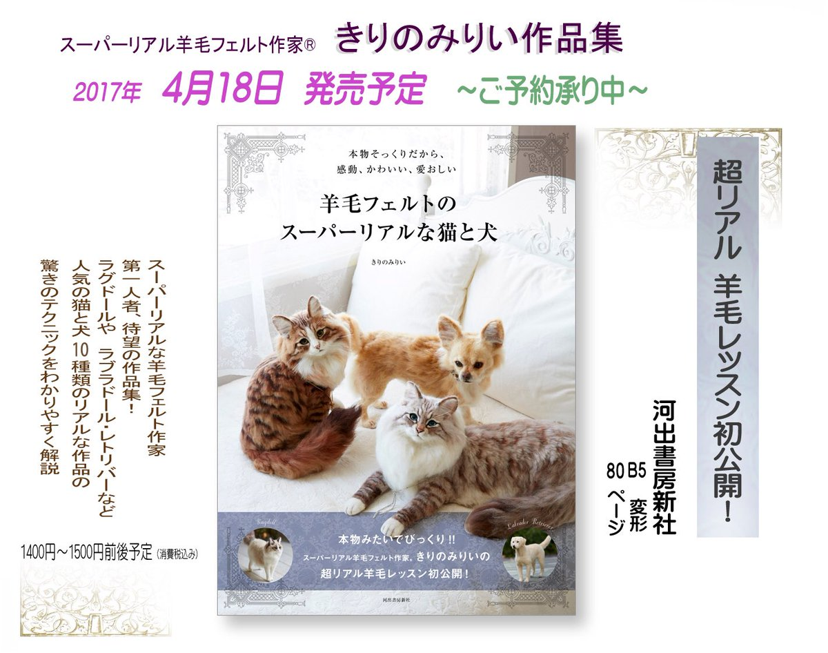 【新書】貓狗擬真羊毛氈新書推薦