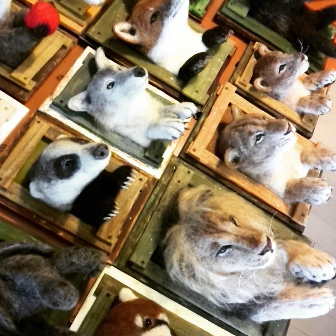 【寫實】羊毛氈動物衝出相框