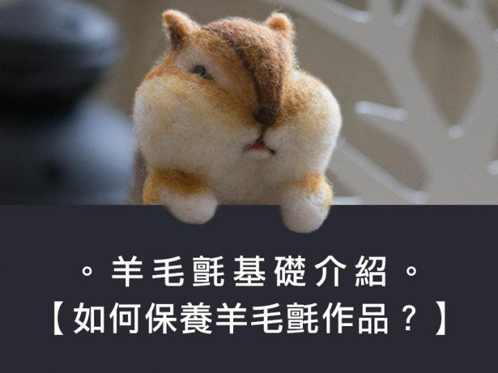 【基礎認識】手邊的羊毛氈作品該如何保養呢?