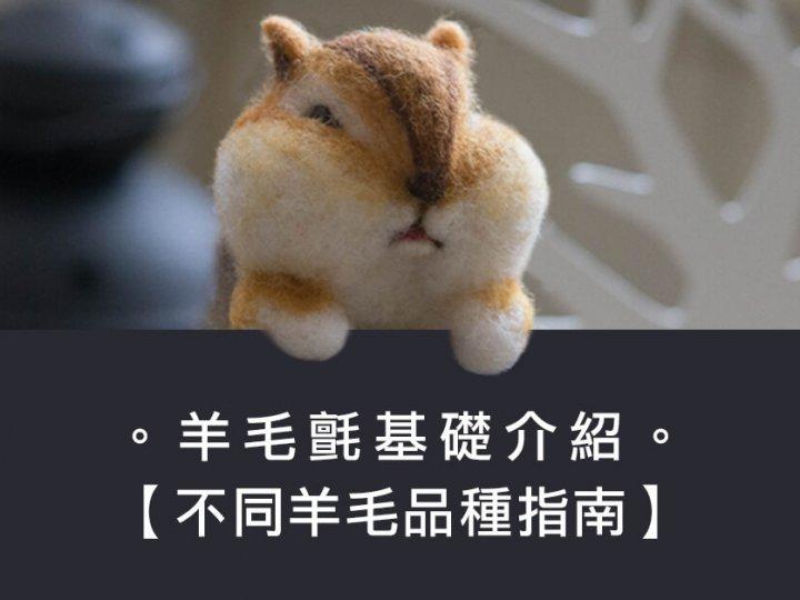 【基礎認識】羊毛氈之不同品種羊毛指南