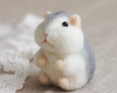 羊毛氈愛麗絲倉鼠