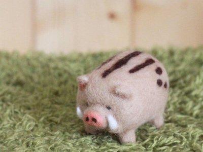 愛麗絲羊毛氈野豬