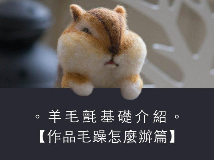 羊毛氈基礎教學[作品毛躁怎麼辦篇]| 愛麗絲手作坊
